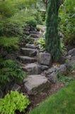 Stone Garden Stairs. A narrow stone staircase in a backyard garden Royalty Free Stock Image