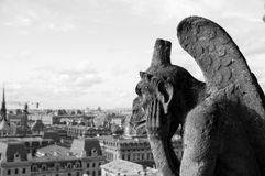 Stone gargoyle of the Cathedral of Notre Dame Royalty Free Stock Photo