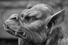 Stone gargoyle head. Angry stone gargoyle head black and white Royalty Free Stock Photos