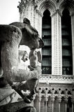 Stone Gargoyles of Notre Dame Royalty Free Stock Photos