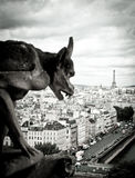 Stone Gargoyles of Notre Dame. In Paris, France Stock Image