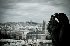 Stone Gargoyles of Notre Dame. In Paris, France Royalty Free Stock Image