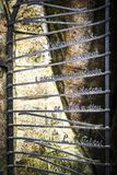 Stone gate in Adrspach. Close-up Stock Photo