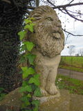 Stone gate guardian and ivy Stock Image