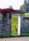 Stone gateway in vaneyard in autumn time Stock Photo