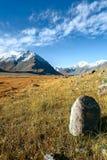 Stone, glacier, meadow Stock Image