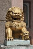 Stone Gold China Lion Sit Royalty Free Stock Photography