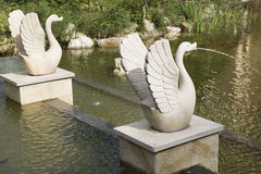 Stone goose statue spray water Stock Images