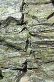 Stone granite chunks  moss background Royalty Free Stock Photography