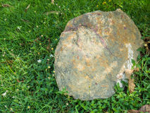 Stone with Grass Stock Photos