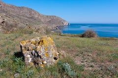 Stone in grass on sea coast Stock Image