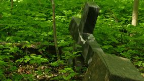 Stone grave cross is fallen. Old cemetery panorama stock video footage