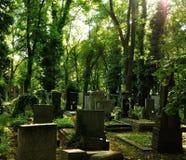 Cemetery with gravestones, Olsany Cemetery in Prague Stock Photo