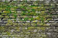 Stone gray extruding bricks Stock Photography