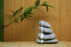 Stone and green Bamboo Royalty Free Stock Photography