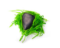 Stone in green grass isolated Stock Photo