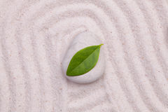 Stone and green  leaf  in the white sand Royalty Free Stock Image