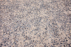 Stone with Grey Cement Royalty Free Stock Image