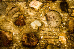 Stone ground Royalty Free Stock Photography