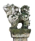 Stone Guardian Lion Statue in the Vietnamese Temples, isolated on white background.  stock photography