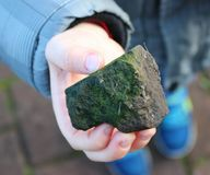 Stone. In hand Stock Photography