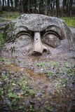 The stone head in the forest park of Peterhof. St. Petersburg. R. The forest park of Peterhof huge stone head buried in the ground. Historians can not find the royalty free stock photography