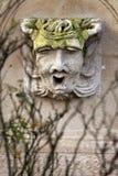 Stone head Royalty Free Stock Image