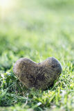 Stone heart in green grass Royalty Free Stock Photo