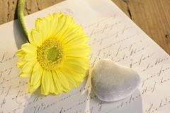 Stone heart with letter and flower Royalty Free Stock Photo