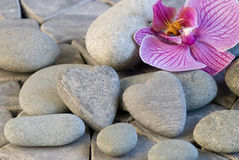 Stone heart and orchid Stock Photo
