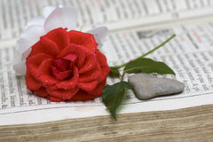 Stone heart with a red and white rose Stock Photo