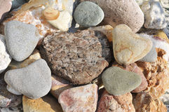 Stone hearts. And bark heart together Royalty Free Stock Image