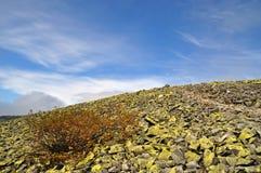 Stone hillside. Royalty Free Stock Image