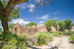Stone Homestead Under Trees Stock Image
