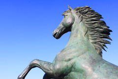 Stone horse head. Galloping horse statue royalty free stock photography