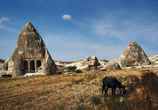 Stone house in Cappadocia. Unusual stone house and rock formation in Cappadocia, Turkey Royalty Free Stock Photos