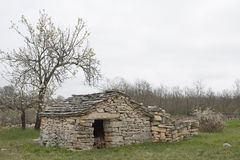 Stone house in Istria. Idyllic stone cottage in Istria with a blossoming cherry tree royalty free stock photos