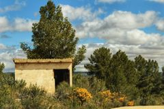 Stone house on the mountain surrounded by Rosmarinus Officinalis, yellow retama sphaerocarpa and pines. Stone house on the mountain surrounded by Yellow retama Royalty Free Stock Images