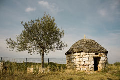 Stone house and olive tree stock images