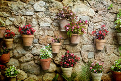 Stone house wall with flowers. Vintage photo of traditional house in mediterranean village in Mallorca, Spain Stock Images
