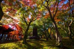 stone inscription with autumn foliage in tofuku-ji, Kyoto Stock Photo