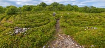 Pathway to the stone labyrinth. Stone labyrinths on the Bolshoy Zayatsky Island. Solovetsky archipelago, White Sea, Russia stock photos