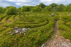 Curls and Labyrinth Paths. Stone labyrinths on the Bolshoy Zayatsky Island. Solovetsky archipelago, White Sea, Russia stock photos
