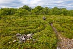 Entrance and exit from the stone labyrinth. Stone labyrinths on the Bolshoy Zayatsky Island. Solovetsky archipelago, White Sea, Russia royalty free stock photos