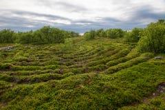 Overgrown with moss labyrinth of stones. Stone labyrinths on the Bolshoy Zayatsky Island. Solovetsky archipelago, White Sea, Russia royalty free stock photos