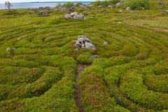 Stones overgrown with moss. Stone labyrinths on the Bolshoy Zayatsky Island. Solovetsky archipelago, White Sea, Russia stock photos