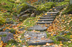 Stone ladder in autumn park Stock Image