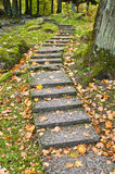 Stone ladder in autumn park Royalty Free Stock Photo