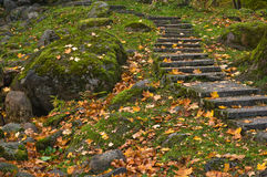 Stone ladder in autumn park Stock Photo