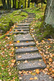Stone ladder in autumn park Royalty Free Stock Photography